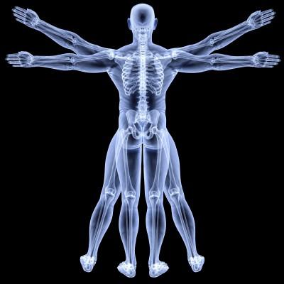 Healthy Body Chiropractor